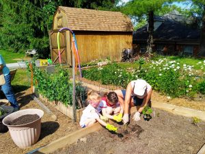 Gardening at the Bluefield Library